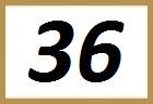 NUMERO 36